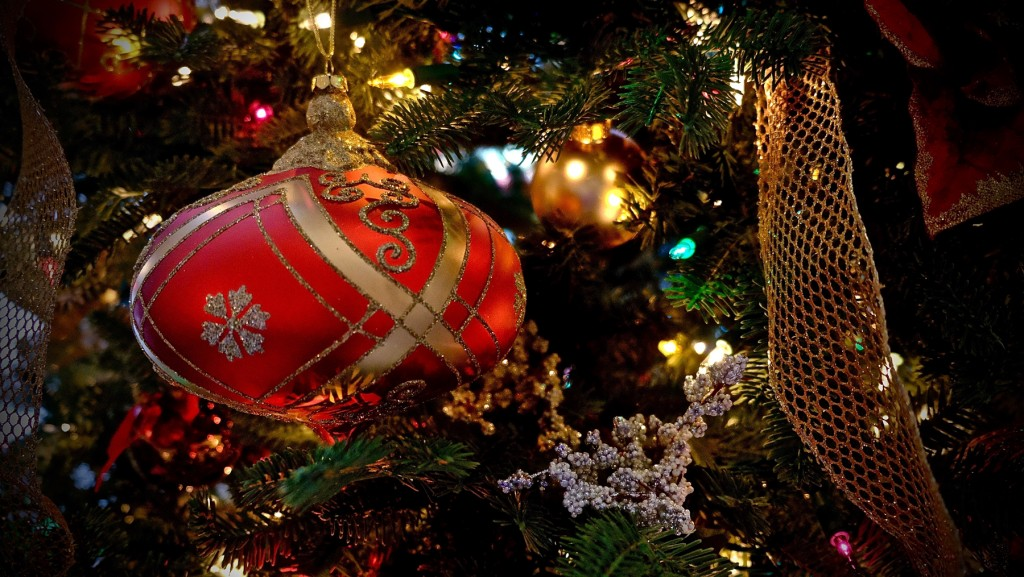 Christmas 2015-8